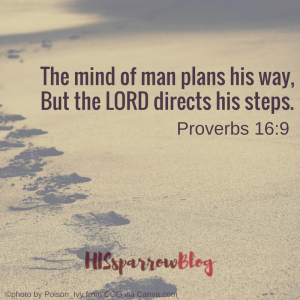 The mind of man plans his way, But the LORD directs his steps. Proverbs 16:9 | HISsparrowBlog | Christian living