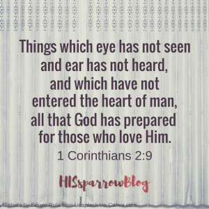 Things which eye has not seen and ear has not heard, and which have not entered the heart of man, all that God has prepared for those who love Him. 1 Corinthians 2:9 | HISsparrowBlog | Christian living