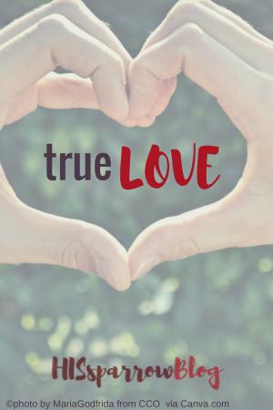 True Love | HISsparrowBlog | Christian living, truth, derrick dillard, jazz Jennings, love, thanksgiving