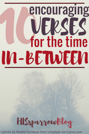 10 Encouraging Verses for the Time In-Between | HISsparrowBlog | Christian living, waiting