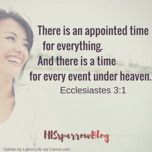 There is an appointed time for everything. And there is a time for every event under heaven. Ecclesiastes 3:1 | HISsparrowBlog | Christian living, death, quotes, scripture