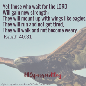 Yet those who wait for the LORD Will gain new strength; They will mount up with wings like eagles, They will run and not get tired, They will walk and not become weary. Isaiah 40:31 | HISsparrowBlog | Christian living, waiting