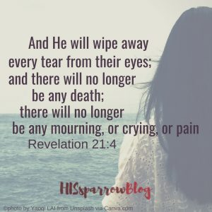 And He will wipe away every tear from their eyes; and there will no longer be any death; there will no longer be any mourning, or crying, or pain. Revelation 21:4