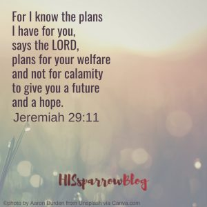 For I know the plans I have for you, says the LORD, plans for your welfare and not for calamity to give you a future and a hope. Jeremiah 29:11 | HISsparrowBlog