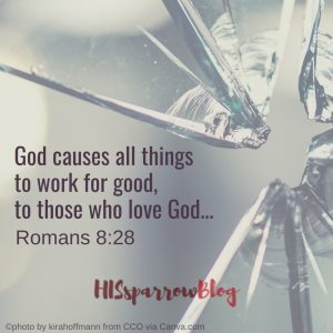 God causes all things to work for good, to those who love God... Romans 8:28