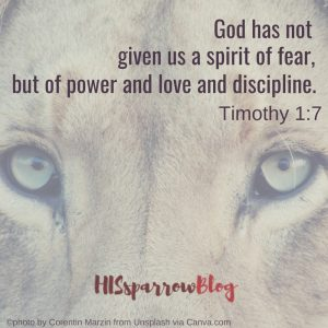 God has not given us a spirit of fear, but of power and love and discipline. 2 Timothy 1:7