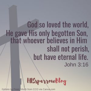 God so loved the world, He gave His only begotten Son, that whoever believes in Him shall not perish, but have eternal life. John 3:16