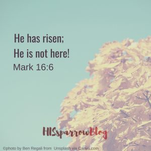 He has risen; He is not here! Mark 16:6