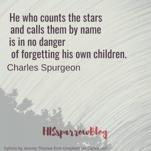 He who counts the stars and calls them by name is in no danger of forgetting his own children. Charles Spurgeon