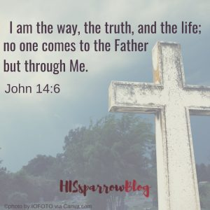 I am the way, the truth, and the life; no one comes to the Father but through Me. John 14:6