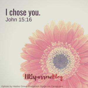 I chose you. John 15:16