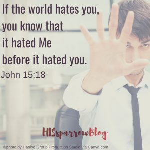 If the world hates you, you know that it hated Me before it hated you. John 15:18