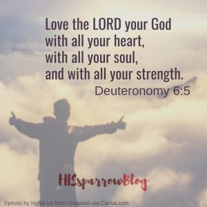Love the LORD your God with all your heart, with all your soul, and with all your strength. Deuteronomy 6:5