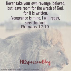 Never take your own revenge, beloved, but leave room for the wrath of God, for it is written, 'Vengeance is mine, I will repay,' says the Lord. Romans 12:19