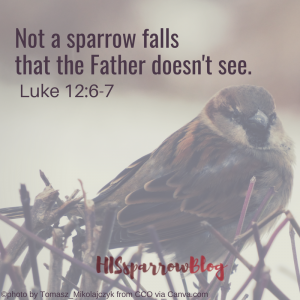 Not a sparrow falls that the Father doesn't see. Luke 12:6-7 | HISsparrowBlog