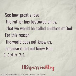 See how great a love the Father has bestowed on us, that we would be called children of God. For this reason the world does not know us, because it did not know Him. 1 John 3:1