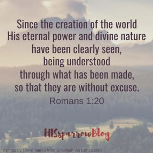 Since the creation of the world His eternal power and divine nature have been clearly seen, being understood through what has been made, so that they are without excuse. Romans 1:20