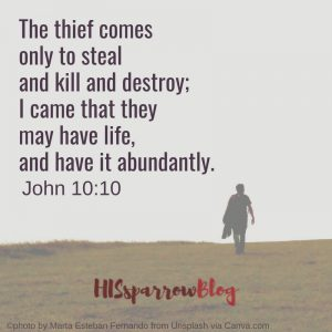 The thief comes only to steal and kill and destroy; I came that they may have life, and have it abundantly. John 10:10
