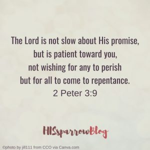 The Lord is not slow about His promise, but is patient toward you, not wishing for any to perish but for all to come to repentance. 2 Peter 3:9