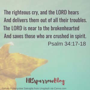 The righteous cry, and the LORD hears And delivers them out of all their troubles. The LORD is near to the brokenhearted And saves those who are crushed in spirit. Psalm 34:17-18