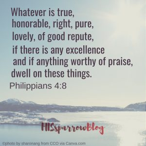 Whatever is true, honorable, right, pure, lovely, of good repute, if there is any excellence and if anything worthy of praise, dwell on these things. Philippians 4:8