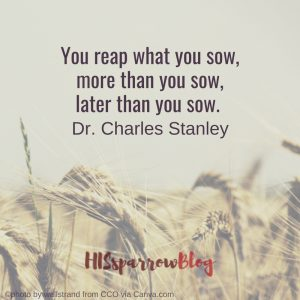 You reap what you sow, more than you sow, later than you sow. Dr. Charles Stanley