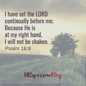 I have set the LORD continually before me; Because He is at my right hand, I will not be shaken. Psalm 16:8 | HISsparrowBlog
