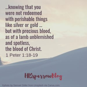 ...knowing that you were not redeemed with perishable things like silver or gold ... but with precious blood, as of a lamb unblemished and spotless, the blood of Christ. 1 Peter 1:18-19 | HISsparrowBlog