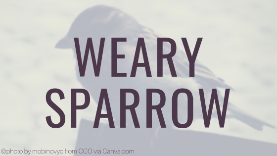 Weary Sparrow